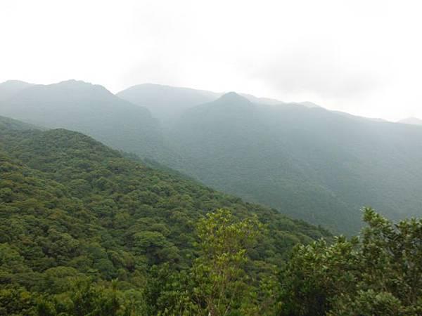 組合山.雲森瀑布.阿涵 045