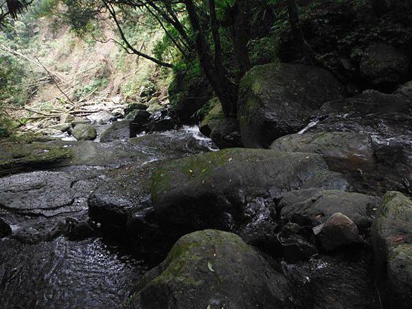 組合山.雲森瀑布.阿涵 081