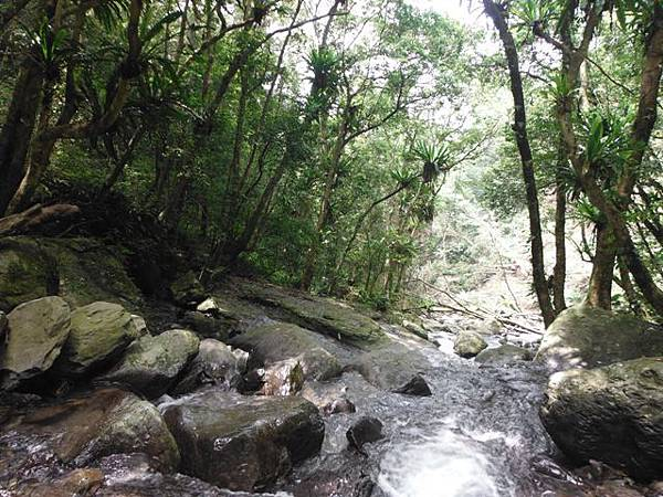 組合山.雲森瀑布.阿涵 086