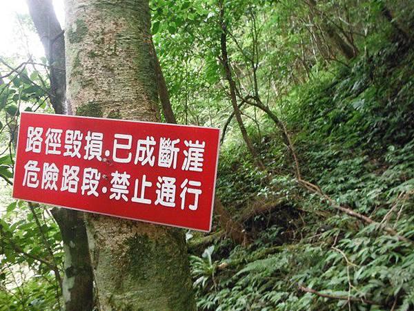 組合山.雲森瀑布.阿涵 090