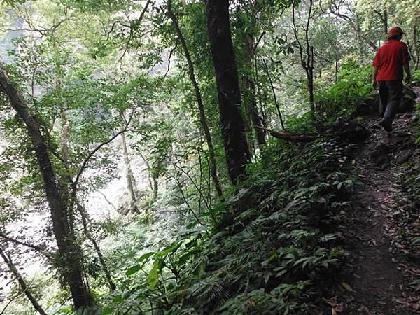 組合山.雲森瀑布.阿涵 149