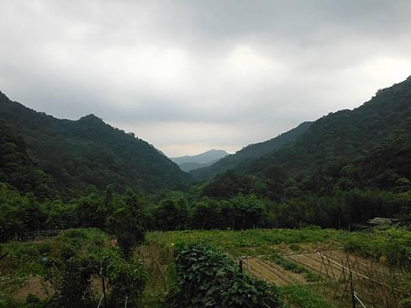 組合山.雲森瀑布.阿涵 179