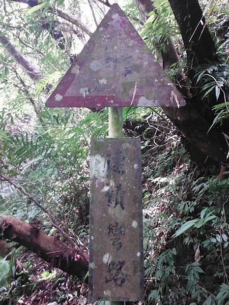 西坑林道 054