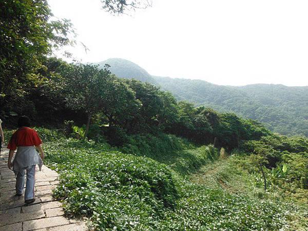 麟山鼻步道.下員坑山.青山瀑布 138