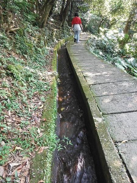 麟山鼻步道.下員坑山.青山瀑布 141