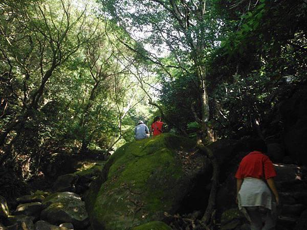 麟山鼻步道.下員坑山.青山瀑布 150