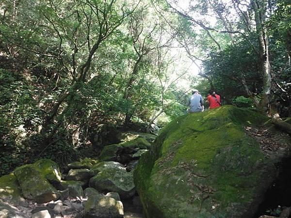 麟山鼻步道.下員坑山.青山瀑布 151