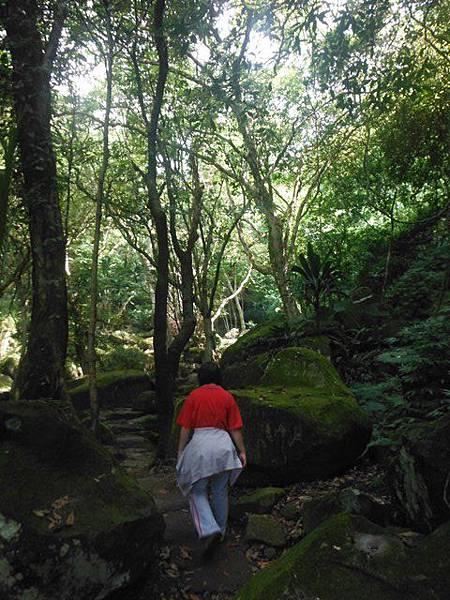 麟山鼻步道.下員坑山.青山瀑布 153