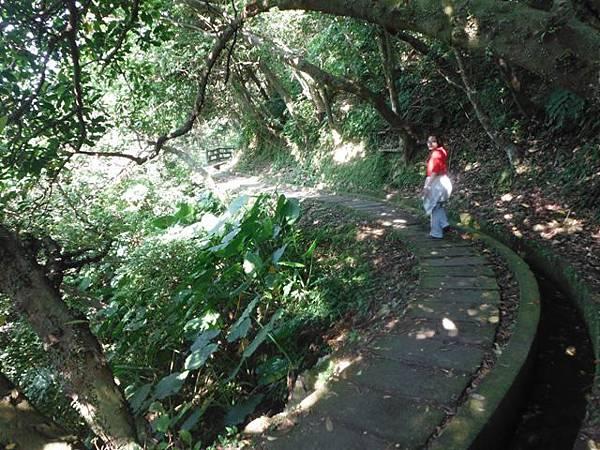 麟山鼻步道.下員坑山.青山瀑布 179