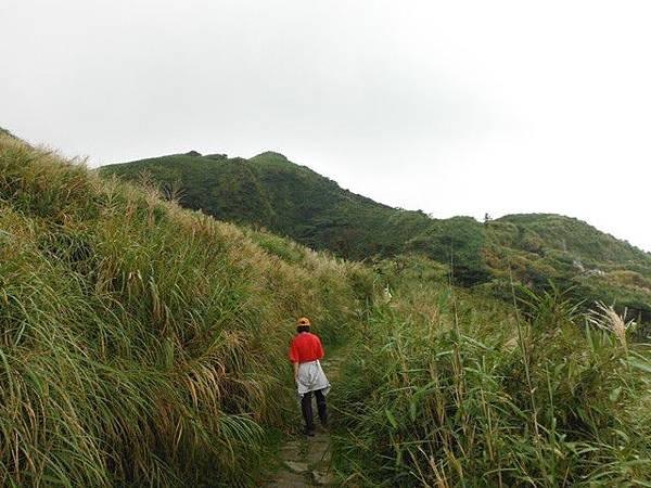 七星山.恐龍接吻石.凱達格蘭山.七星山南峰 016