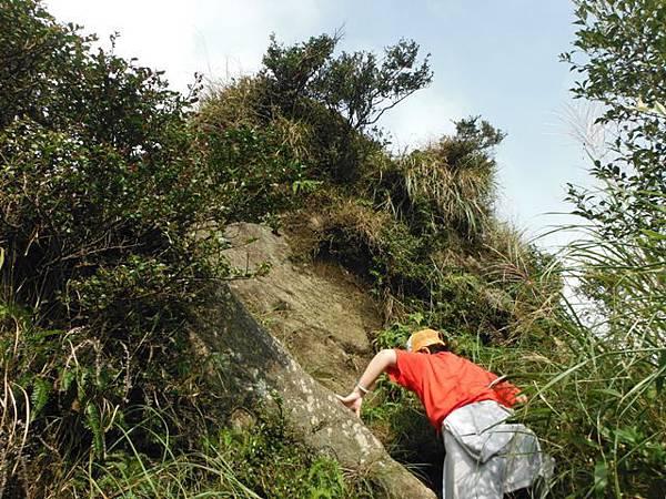 七星山.恐龍接吻石.凱達格蘭山.七星山南峰 072