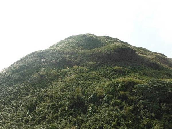 七星山.恐龍接吻石.凱達格蘭山.七星山南峰 076