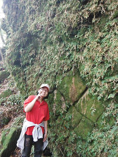 七星山.恐龍接吻石.凱達格蘭山.七星山南峰 092