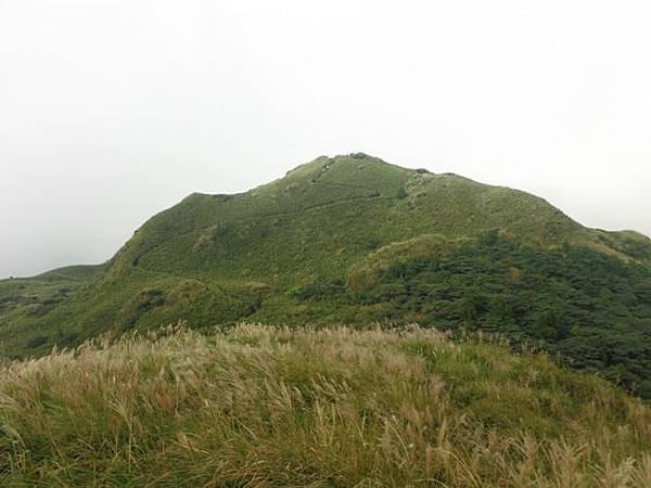 七星山.恐龍接吻石.凱達格蘭山.七星山南峰 098