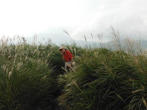七星山.恐龍接吻石.凱達格蘭山.七星山南峰 101