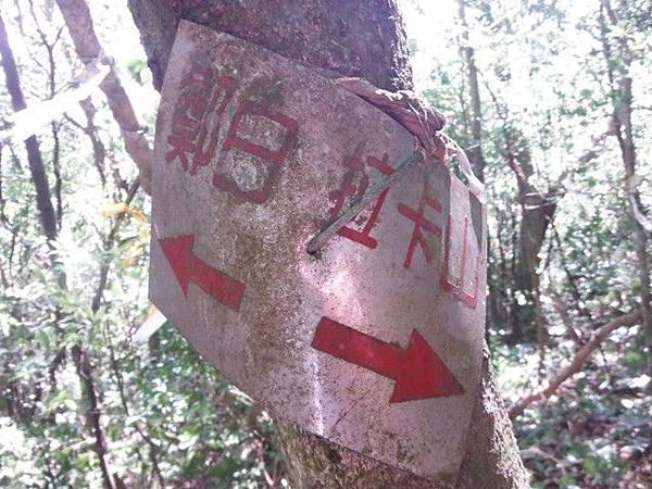 拉卡山.東滿步道 031