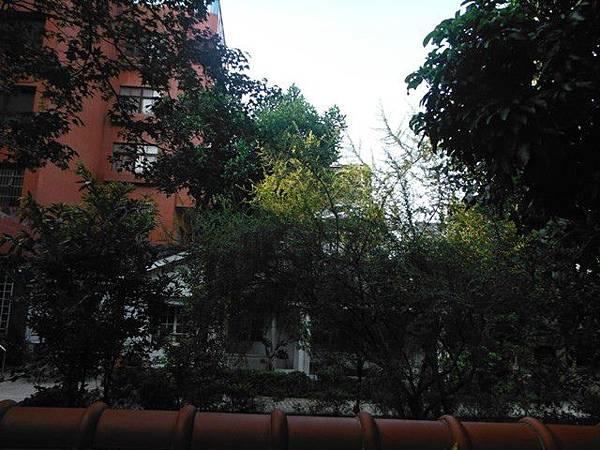 永和博愛藝術街 008.JPG