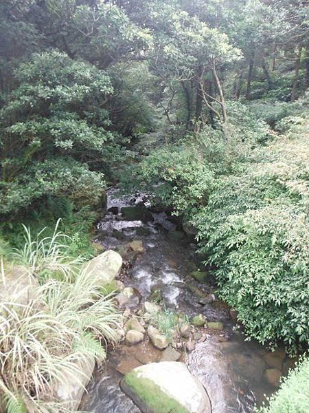 青楓步道.中正山 017