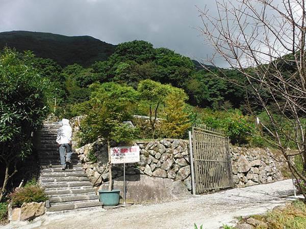 青楓步道.中正山 026