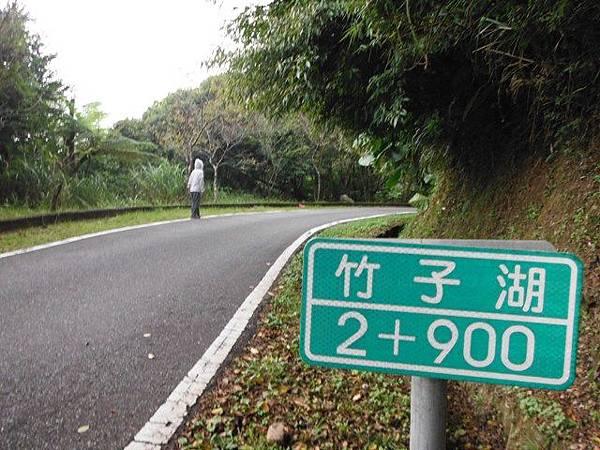 青楓步道.中正山 037