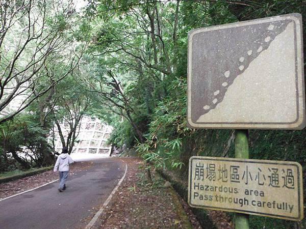 青楓步道.中正山 049