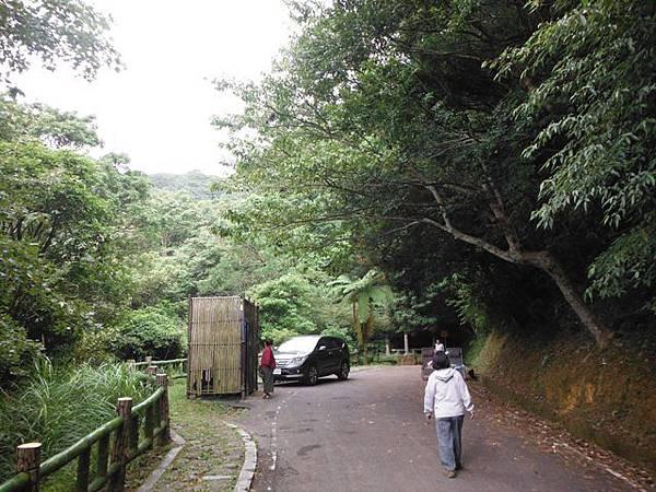 青楓步道.中正山 051