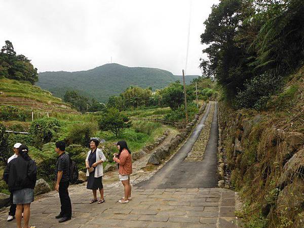 青楓步道.中正山 138
