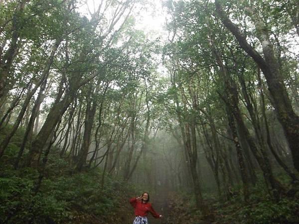 東滿步道.拉卡山 039