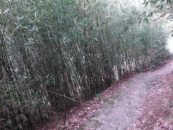 平溪步道.溪山百年古圳步道.平菁步道地圖 023