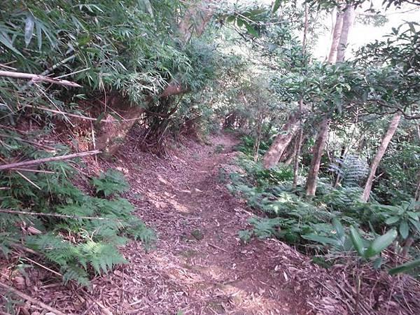 平溪步道.溪山百年古圳步道.平菁步道地圖 060