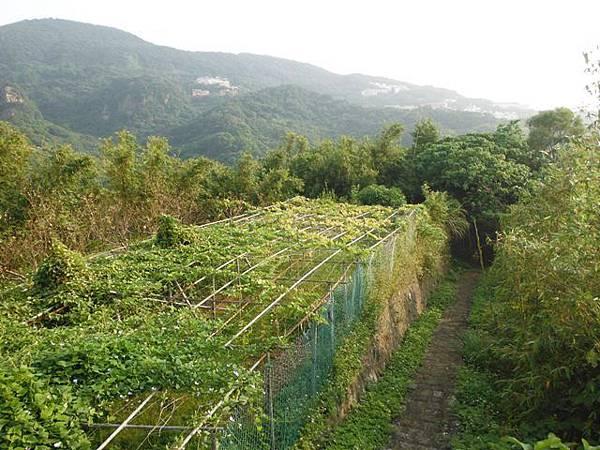 平溪步道.溪山百年古圳步道.平菁步道地圖 108