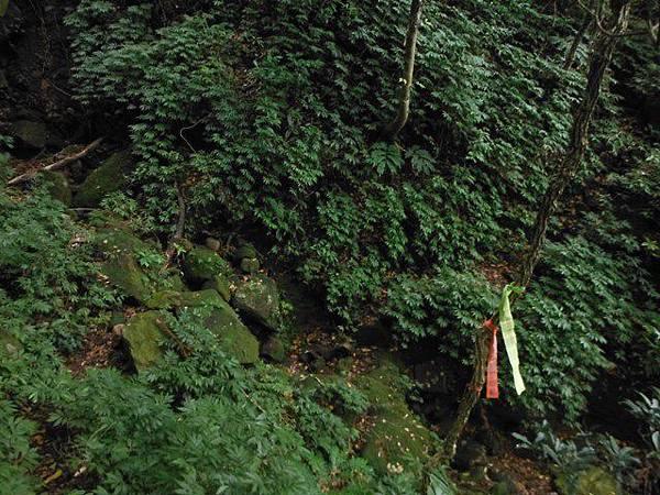小觀音山西峰火山口.大屯自然公園.百啦卡山.大屯山夕陽、雲海、秋芒 074.JPG