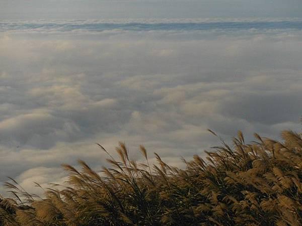 小觀音山西峰火山口.大屯自然公園.百啦卡山.大屯山夕陽、雲海、秋芒 157.JPG