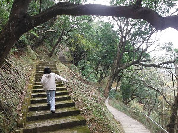 拱北殿賞楓.三秀山 036