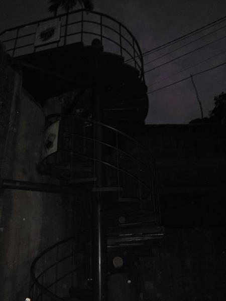 台北101聖誕樹.和興炭坑 026