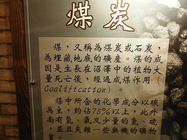 台北101聖誕樹.和興炭坑 045