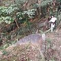 羊年除夕.中埔山.芳蘭山北區水建會隧三角13號基石 026
