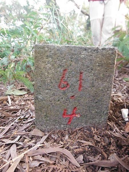 羊年除夕.中埔山.芳蘭山北區水建會隧三角13號基石 054