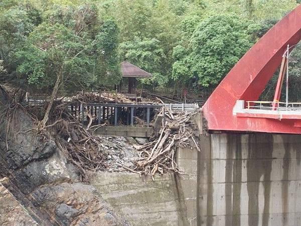 風災後烏來紅河谷2015 016