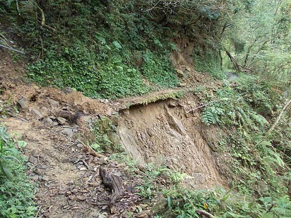 風災後烏來紅河谷2015 028