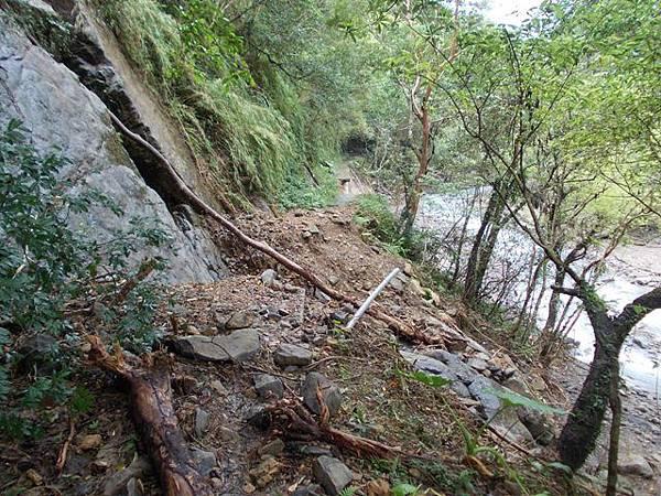 風災後烏來紅河谷2015 030