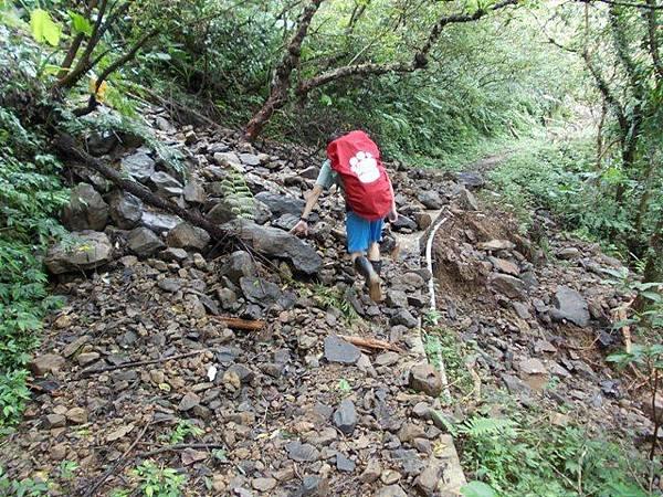 風災後烏來紅河谷2015 033