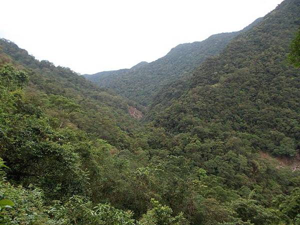 風災後烏來紅河谷2015 040