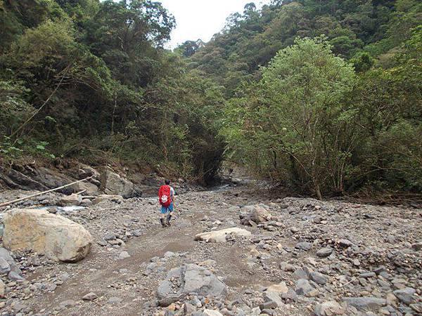 風災後烏來紅河谷2015 050