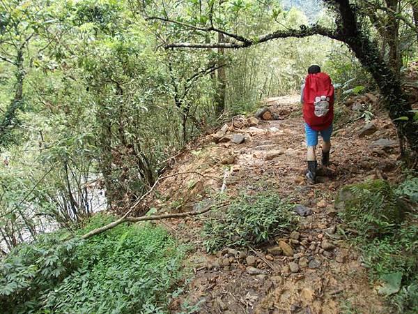 風災後烏來紅河谷2015 053