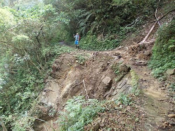 風災後烏來紅河谷2015 054