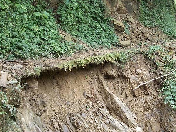 風災後烏來紅河谷2015 055