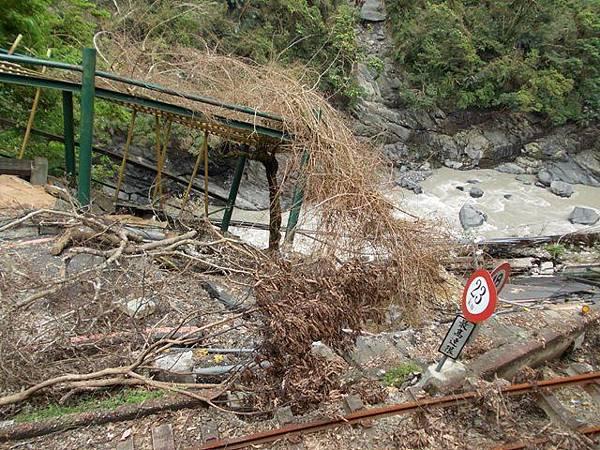風災後烏來紅河谷2015 077