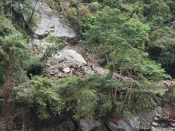 風災後烏來紅河谷2015 094