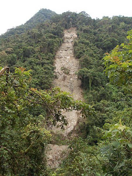 風災後烏來紅河谷2015 099